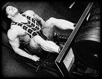 animalpak11b 7 съвета за мускулна маса и сила