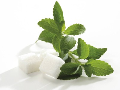 stevia 1 Стевия – естествен подсладител на добра цена