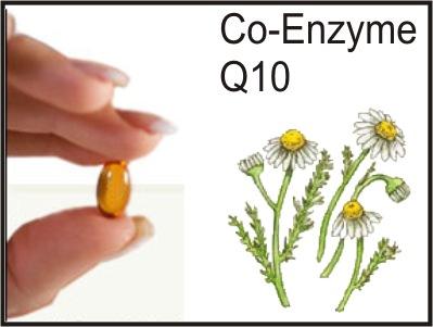 Coenzyme Q10 Коензим Q10 симптоми на дефицит