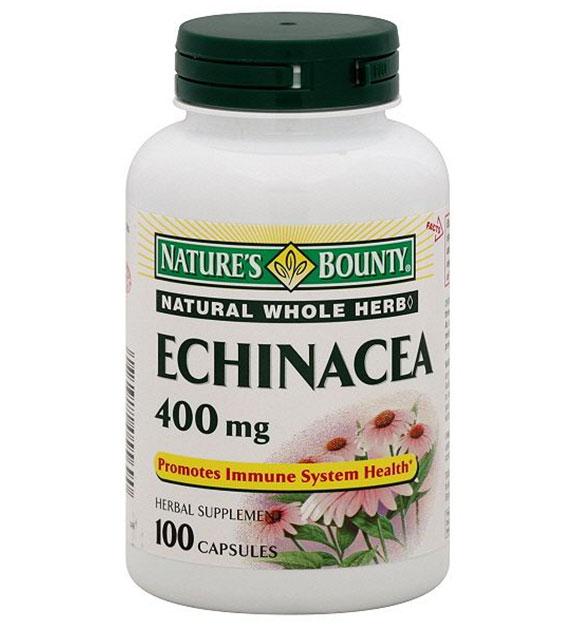 echinacea Ехинацея   ефекти от тази билка