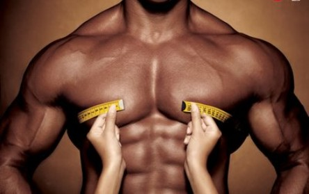 weight muscle gain Естроген – малката сестра на тестостерона