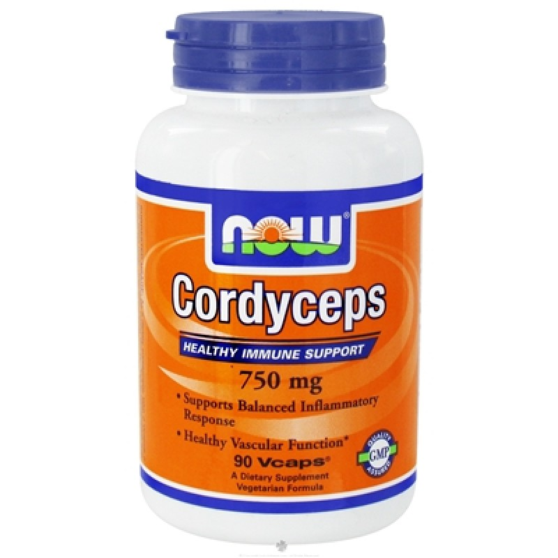 now cordyceps 800x800 Кордицепс