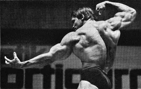 arnold schwarzenegger bodybuilding wallpaper conquer
