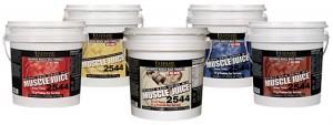 gainer 300x113 Гейнър за мускулна маса   как да изберем правилният гейнър?