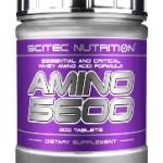 Аминокиселини – всичко за аминокиселините