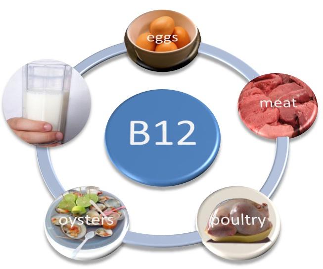 vitamin B12 sources Дефицит на витамин Б12