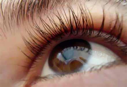lutein za ochi Лутеин   здраве за очите