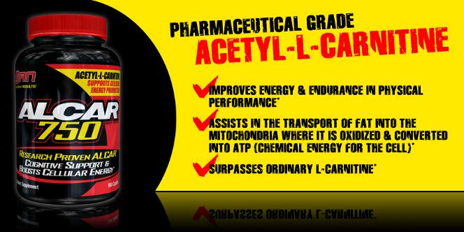 acetyl l carnitine cena Acetyl L Carnitine дозировка за отслабване