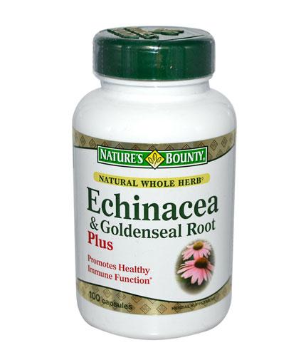 nb echinacea goldenseal Ехинацея за тонус и имунитет