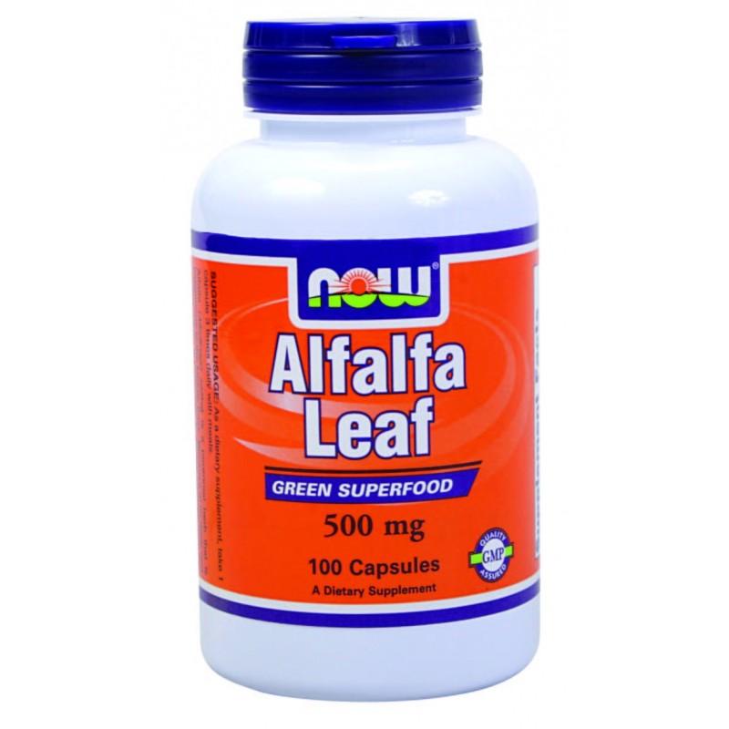 now alfafa leaf 800x800 Здравословни ползи от люцерна