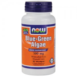 now foods blue green algae  Синьо зелените водорасли АФА