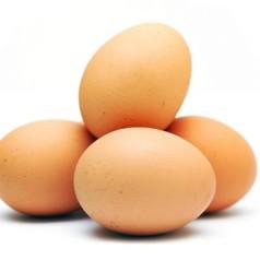 Яйчен протеин и мускули