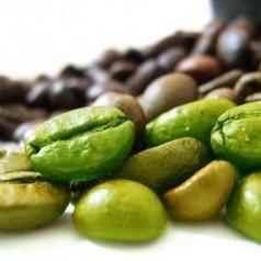 Има ли ефект екстракт от зелено кафе върху отслабването
