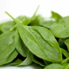 Магнезий – дневна доза и в кои храни се съдържа магнезий