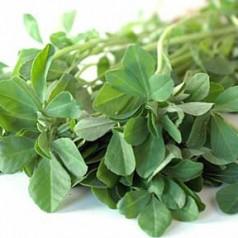 Сминдух – ароматна подправка, но и билка